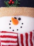 Cute snowman. Close-up of a cute snowman doll face Stock Photography