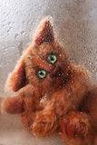 Cute soft toy Cat looking through rainy window stock images
