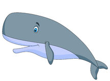 Cute sperm whale cartoon Stock Image
