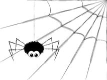 Cute spider Royalty Free Stock Photo