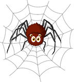 Cute spider cartoon Royalty Free Stock Photo