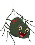 Cute spider cartoon. Vector illustration of Cute spider cartoon isolated on white Royalty Free Stock Image
