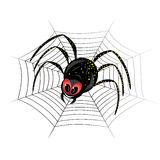 Cute spider on web Royalty Free Stock Photo