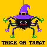 Cute spider in witch hat Royalty Free Stock Image