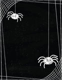 Cute Spiders Hanging off a Web Border on a Chalkboard Background. Cartoon spiders hanging from the borders of a spider web frame on a chalkboard style background Royalty Free Stock Images