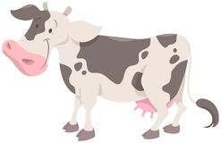 Cute spotted cow animal Stock Images