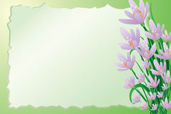 Cute spring background Royalty Free Stock Images