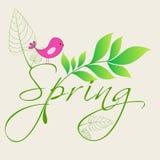 Cute spring bird illustration Stock Photo