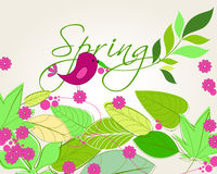 Cute spring bird illustration Royalty Free Stock Photo