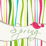 Cute spring bird illustration Royalty Free Stock Photography