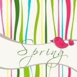 Cute spring bird illustration Royalty Free Stock Photography