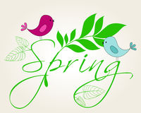 Cute spring birds illustration Royalty Free Stock Images