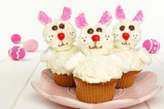 Cute spring bunny cupcakes on pink plate with Easter eggs Stock Image