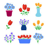 Cute spring flowers in pots  Stock Image