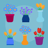Cute spring flowers in pots Stock Photos