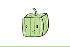 Cute Square watermelon Illustration Royalty Free Stock Photography