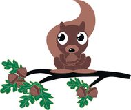 A cute squirrel Royalty Free Stock Photography