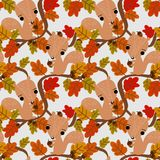 Cute squirrel and autumn leaves seamless pattern. Stock Image