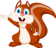 Cute squirrel cartoon Stock Image