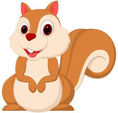 Cute squirrel cartoon Royalty Free Stock Photos
