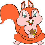 Cute Squirrel. Cute cartoon and vector  of cute Squirrel Royalty Free Stock Photo