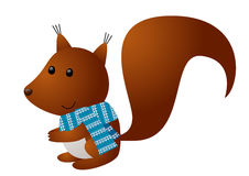 Cute squirrel Royalty Free Stock Image
