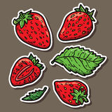 Cute strawberries. Stock Image