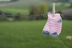 Baby socks drying with wooden clothespin on barbed wire, against green background stock photography
