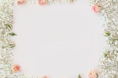 Cute and stylish branding mockup photo stock photography