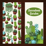 Cute succulent vector banners. Royalty Free Stock Image