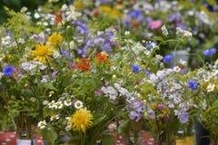 Cute summer bouquet Stock Photos