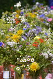 Cute summer bouquets Stock Image