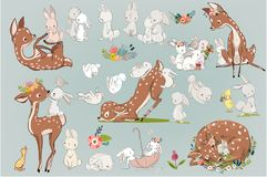 Free Cute Summer Deers With Hares Stock Image - 111419131