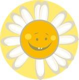 Cute sun stock image