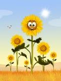 Cute sunflowers field. Cute illustration of sunflowers field Royalty Free Stock Photo