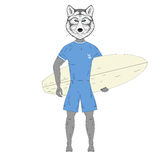 Cute surfer wolf with surfboard. Hand drawn anthropomorphic anim Royalty Free Stock Photos