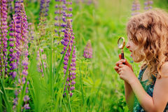 Cute surprised child girl exploring nature with loupe on summer field Stock Images