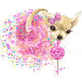 Cute sweet dog T-shirt graphics. Funny dog illustration with splash watercolor textured  background. Stock Images