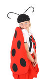 Cute sweet ladybird Stock Photography