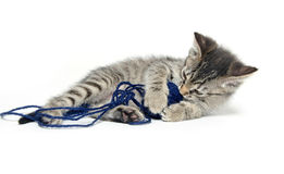 Cute tabby kitten with ball of yarn on white Stock Photos