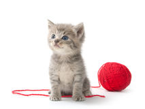 Cute tabby kitten with red ball of yarn Royalty Free Stock Photo