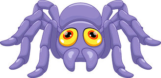 Cute tarantula cartoon Royalty Free Stock Photography