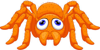 Cute tarantula cartoon Royalty Free Stock Images