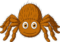 Cute tarantula spider cartoon Stock Photo