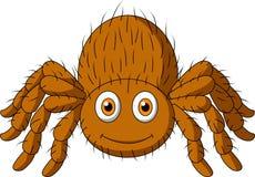Cute tarantula spider cartoon. Illustration of cute tarantula spider cartoon Stock Photo