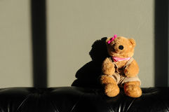 Cute Teddy bear female doll toy is sitting on old vintage sofa. A teddy bear is a soft toy in the form of a bear. Developed apparently simultaneously by Stock Image