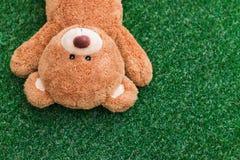 Cute teddy bear Stock Images