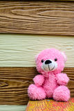 Cute teddy bear have a rest Royalty Free Stock Photo