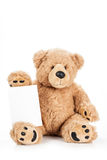 Cute teddy bear holding blank board Royalty Free Stock Photos