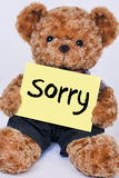 Cute Teddy bear holding a  yellow sign that says Sorry Royalty Free Stock Photo